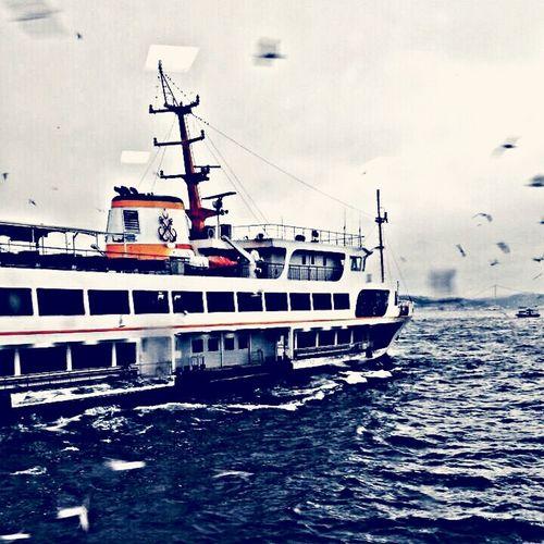 Istanbul - Bosphorus Istanbul #bogaz Istanbul #turkiye Feribot Martılar Deniz Yağmur