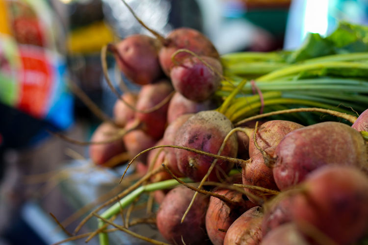 Close-up of radish for sale in market