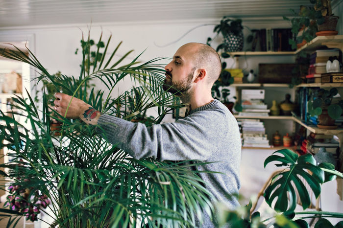 FULL LENGTH OF YOUNG MAN WITH PLANTS IN ROOM