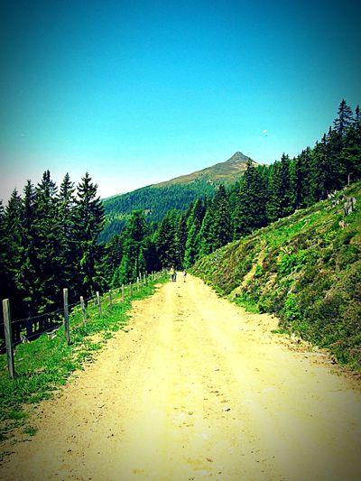Vanishing Point Childhood Kindheit Hiking Wandern Berge Mountains Taking Photos Hello World Emberger Alm