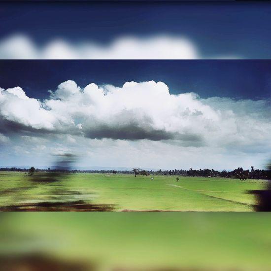 Famztime First Eyeem Photo Bireuen To Banda Sofunandhappy Cuthusna Teukuhusein