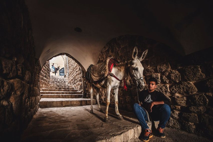 Mardin Real People Full Length Lifestyles Night Men People 10 Motion Women Illuminated Group Of People City Built Structure Arts Culture And Entertainment Front View Casual Clothing Adult Outdoors Leisure Activity Architecture Wall - Building Feature The Photojournalist - 2018 EyeEm Awards The Great Outdoors - 2018 EyeEm Awards The Still Life Photographer - 2018 EyeEm Awards The Traveler - 2018 EyeEm Awards HUAWEI Photo Award: After Dark