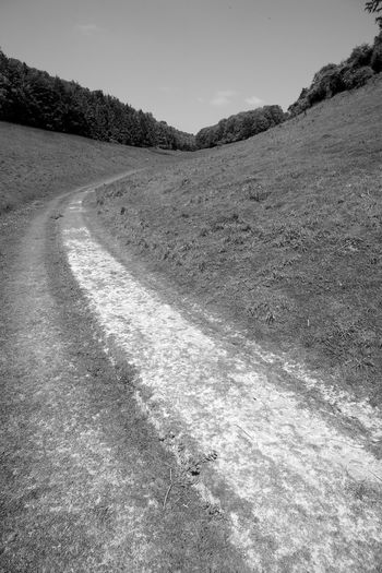 Following The Path Day No People Nature Direction The Way Forward Tranquility Sky Landscape Road Beauty In Nature Tranquil Scene Footpath Scenics - Nature Plant Outdoors Sunlight Trail Blackandwhite Black And White