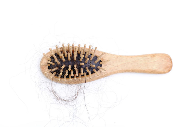 Hair loss problem Bundle Care Concepts Hair Healthcare Alopecia Background Black Brown Brush Close-up Comb Combover Copyspace Fall Female Full Hairbrush Haircare Hairless  Health Studio Shot White Background