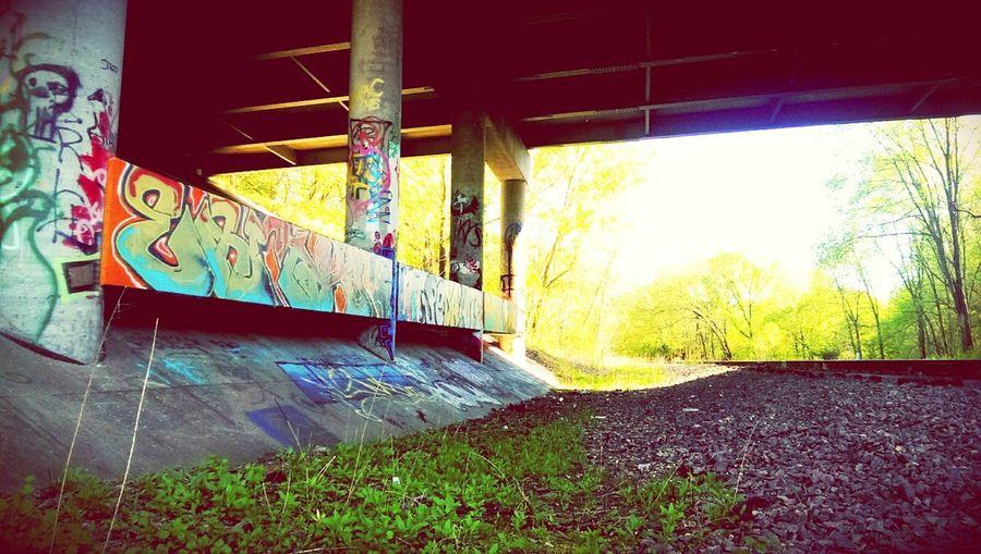 Exploring Urban Nature Urban Art