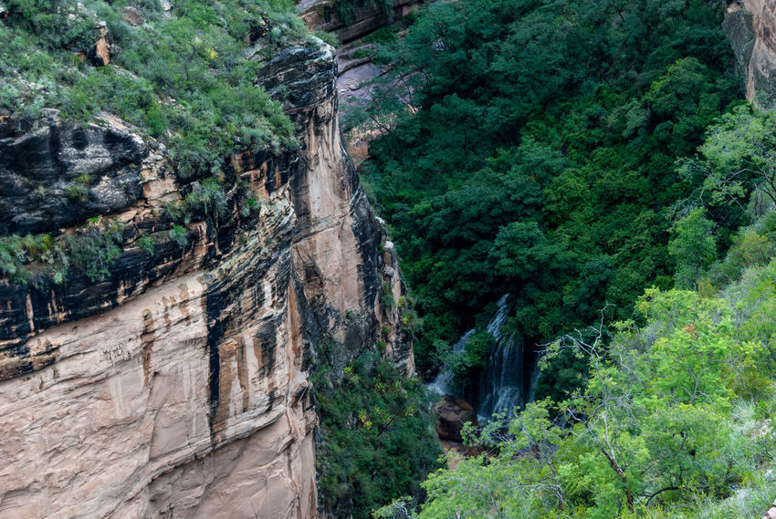 Canyon Waterfall Bolivia Beauty In Nature Canyon Cliff Day Forest Green Color Growth Landscape Mountain Nature No People Outdoors Plant Rock - Object Rock Face Scenics Torotoro Tree