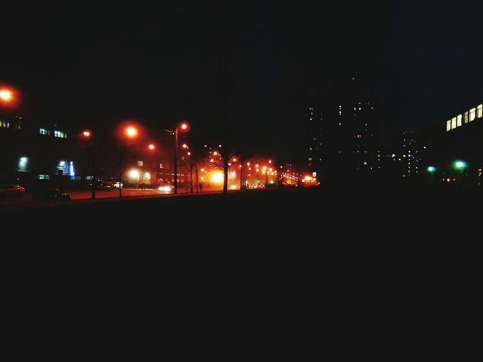 Lights Night Saint- Petersburg