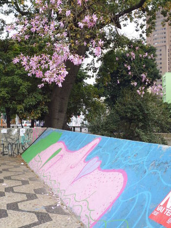 The Pink Lady Susan A. Case Sabir Unretouched Photography Avenida Consolacao Day Downtown São Paulo No People Outdoors Pink Color Pink Lady Sidewalk Art Street Art Photography Streetscape Streetscene Yperosa Ypê