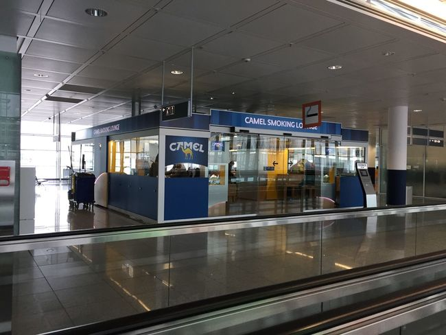 Airplane Ticket Airport Airport Check-in Counter Airport Departure Area Architecture Arrival Arrival Departure Board Built Structure Day Indoors  No People Reflection Transportation Travel