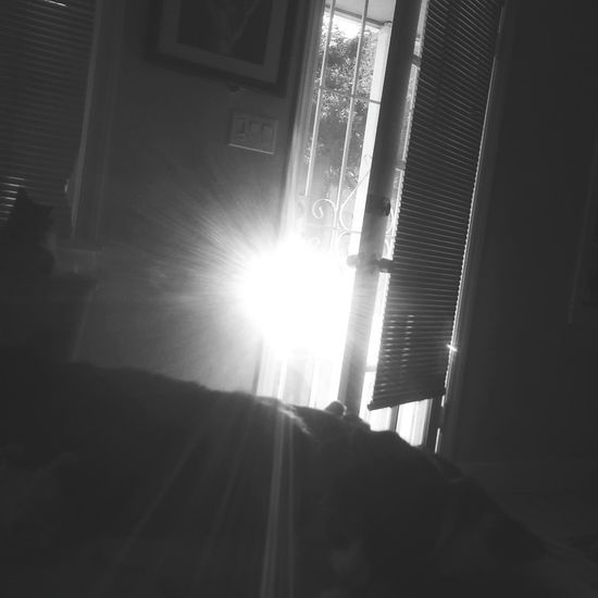 No People Indoors  Tranquility Reflection Sunlight, Shades And Shadows Sunlight Effect Sunlight And Reflection Sunlight Off Of Window Black And White Friday