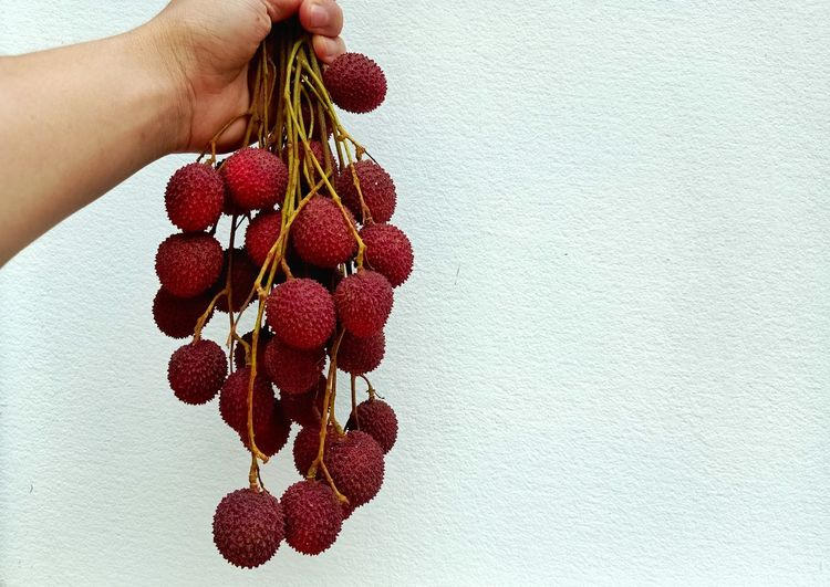 Close-up of hand holding strawberry hanging against wall