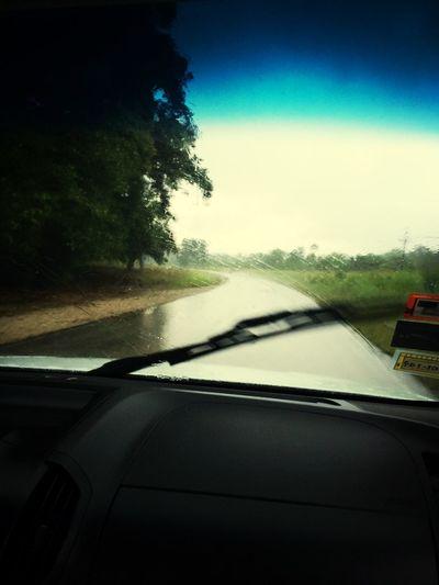 Y llovió ...
