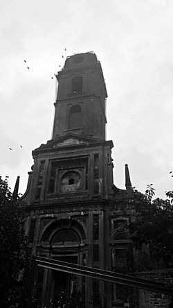 Bat Pairi Daiza Animal Themes Architecture Bird Blackandwhite Building Exterior Built Structure Canon Eos 1100 D Cloud - Sky Day Flying History Low Angle View Nature No People Outdoors Sky Spirituality Travel Destinations Tree