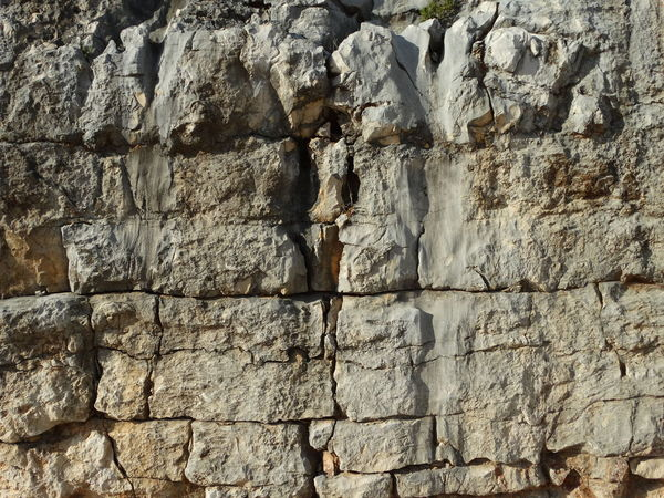 Backgrounds Built Structure Close-up Day Full Frame Low Angle View Nature No People Outdoors Pattern Rough Textured