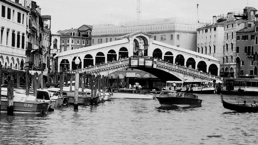 Rialtobridge Venezia Venice, Italy Black And White Bridges