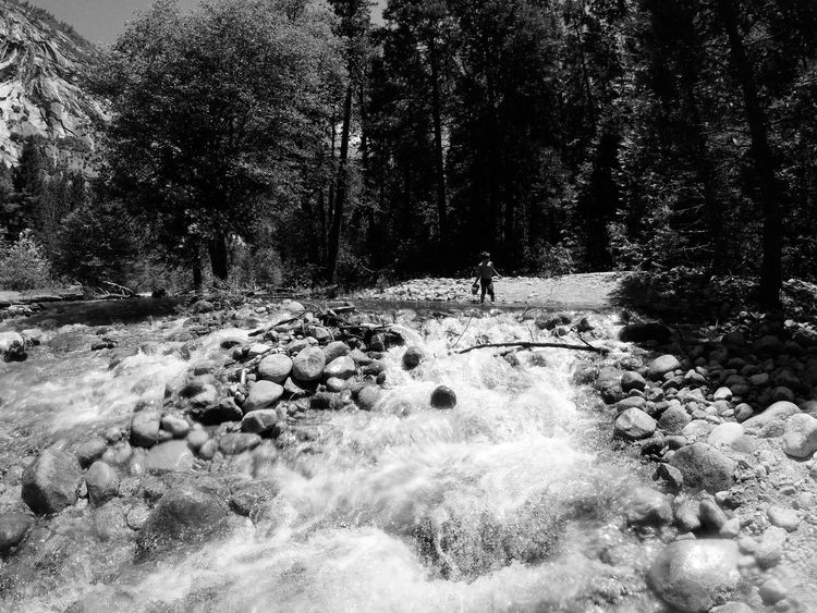 Yosemite National Park Camp Time Boys Life River Forest Merced River