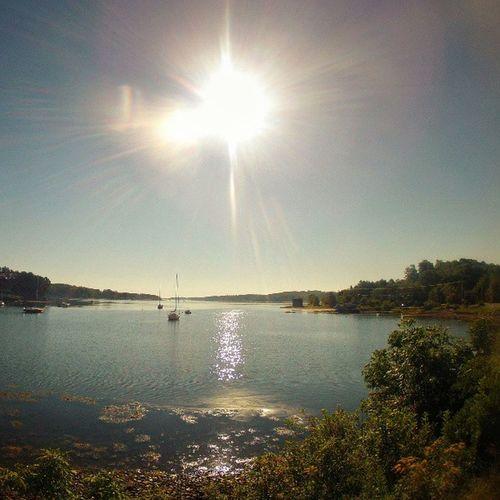 Morning Sun over PrincesInlet , Novascotia . igersottawa gopro