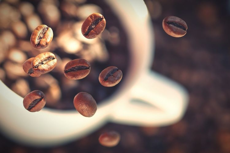 Coffee background Coffee Beans Studio Abstract Food Cup Floating Flying Colorful Brown White Still Life Seeds Drink Cafeine Toasted Stock One Daily Shot Beautifully Organized EyeEm Best Shots Coffee Colour Of Life
