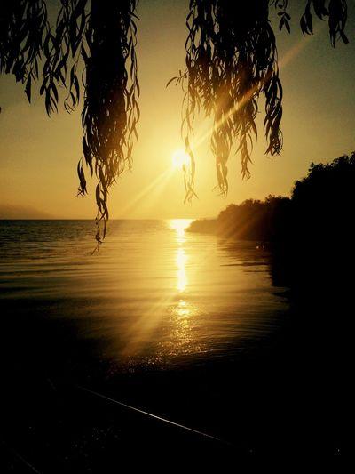 Sunset Sun Set Sunset Silhouettes