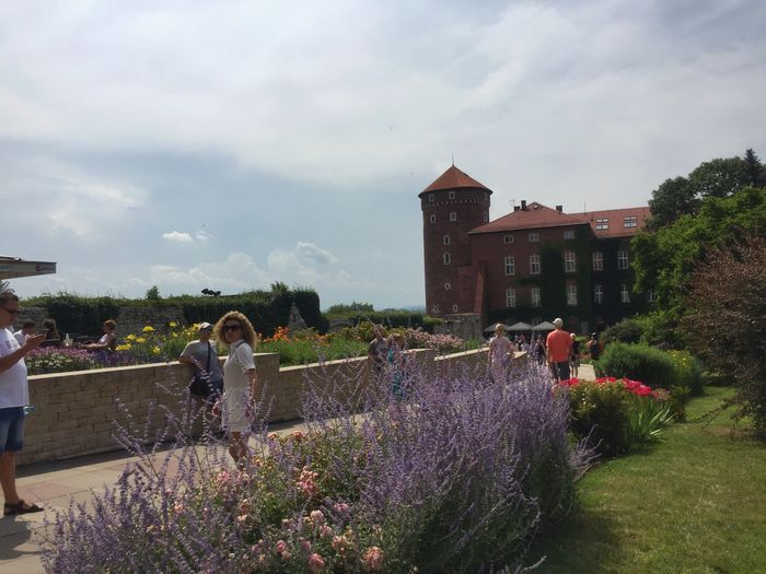 Krakow Castle Summer Poland