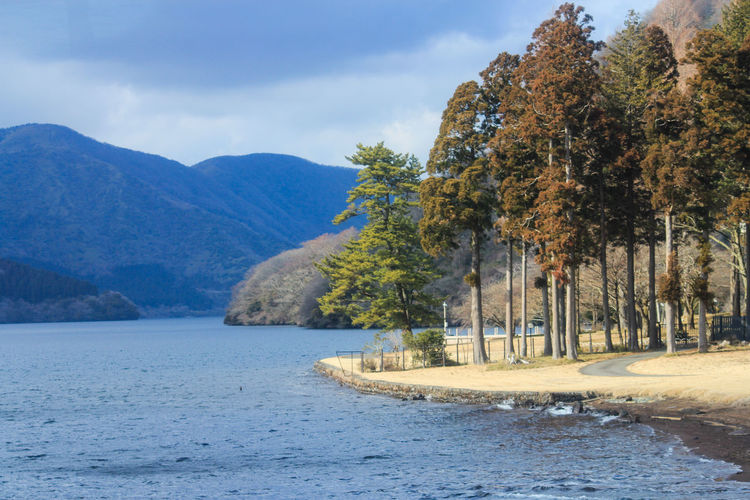 Lake Ashi. Traveling Remote Water Nature Sky Landscape Tree Blue Travel Cloud Day Outdoors Tranquility Mountain Growth Travel Photography Scenics Beauty In Nature No People Idyllic Travel Destinations Tranquil Scene Mountain Range Non Urban Scene Non-urban Scene Cloud - Sky Been There. Lost In The Landscape Waterfront