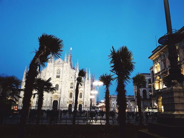 Exotic town...... Architecture Built Structure Building Exterior Clear Sky Palm Tree Low Angle View Statue Outdoors Travel Destinations Tree Sculpture Place Of Worship Sky No People Day Piazza Del Duomo Milan,Italy Milan Farmland Milan Fashion Week Milanodavedere