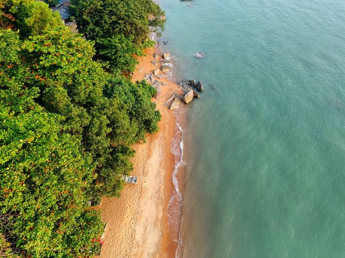 Top view of Tanjung Bidara Clear Water Top View Aerial View Picnic High Angle View Nature Sea Water Scenics Tree Beauty In Nature Outdoors No People Beach Day First Eyeem Photo