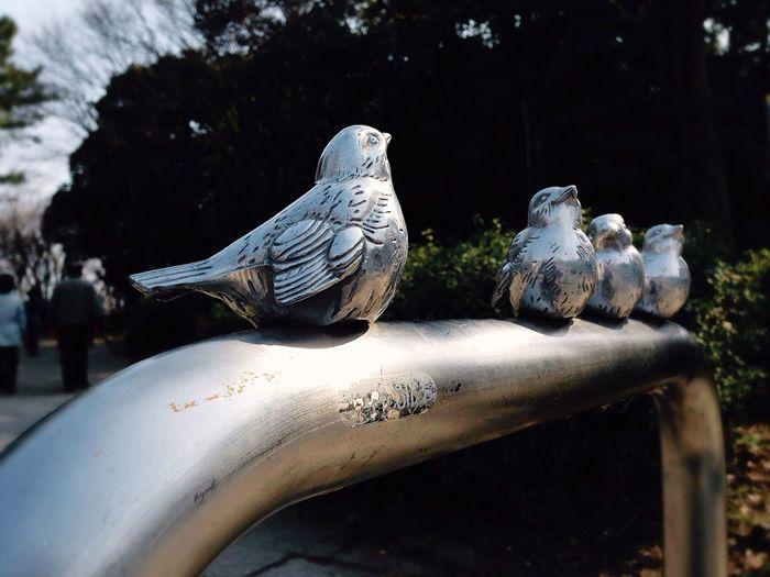 車止め・ガードパイプなんだけど。。。ありそぅで…ないでチュ~🐦🐦🐦🐦 Guardpipe Carstop That's Love SoCuteeee Love💏 Smallbirds
