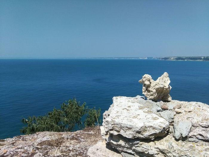 stone bird, Sea