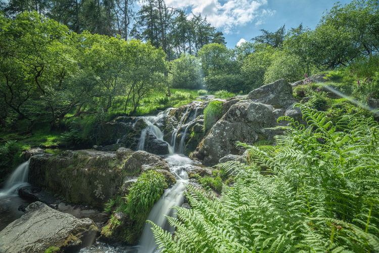 Cascades of