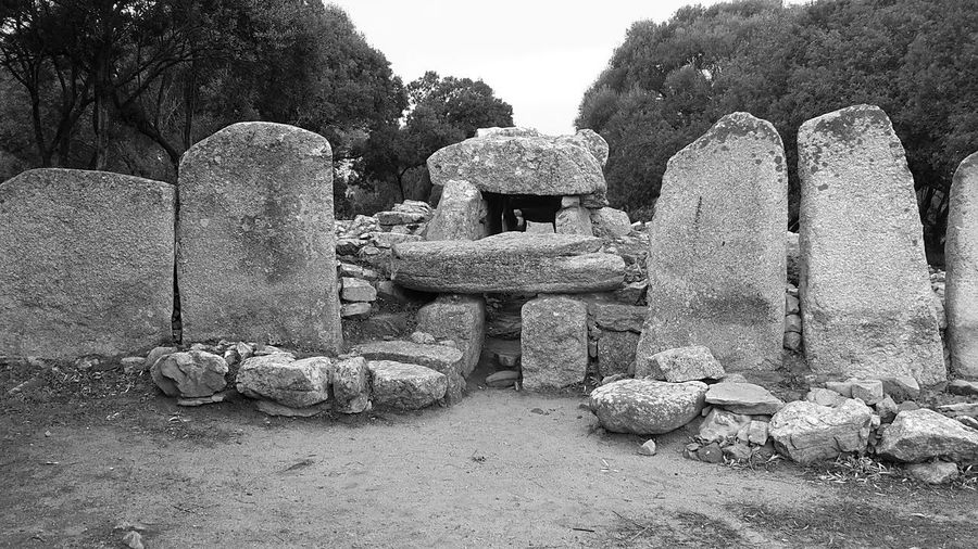 Tomba dei