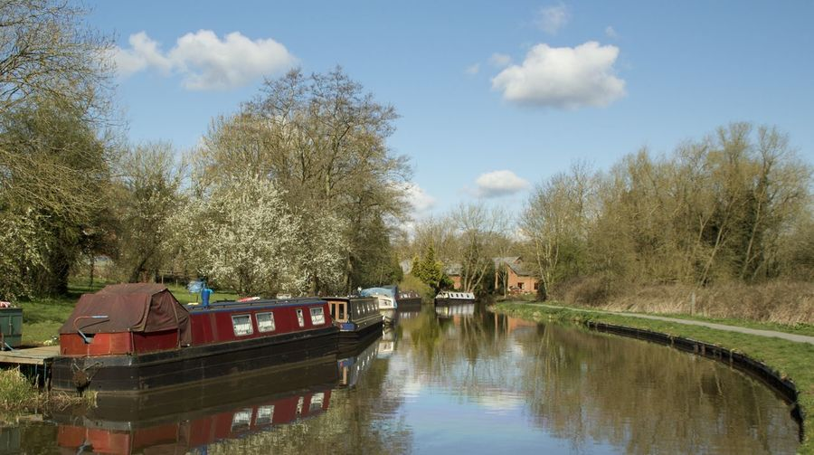 Boat moored in calm canal against trees