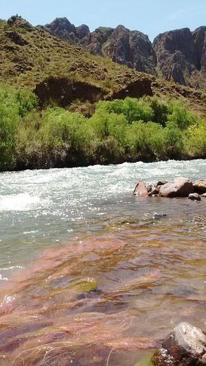 Nature Day Beauty In Nature Outdoors Water No People Tree Landscape Nature Photography Nature_collection EyeEm Mountain River View Travelling Tranquility Today Tree Nature Reserve Nature Sun Terra  Green Color Beauty In Nature Happy San Rafael Mendoza