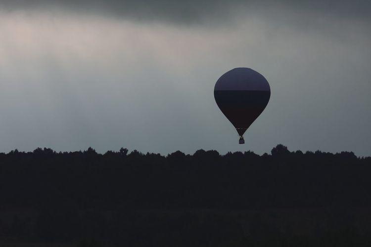 Evening Sky Evening Light Sky Hot Air Balloon Hot Air Balloons Air Vehicle Silhouette_collection Silhouette Evening View Flight Flightview Hot Air Balloon Tree Flying Silhouette Sky Space And Astronomy