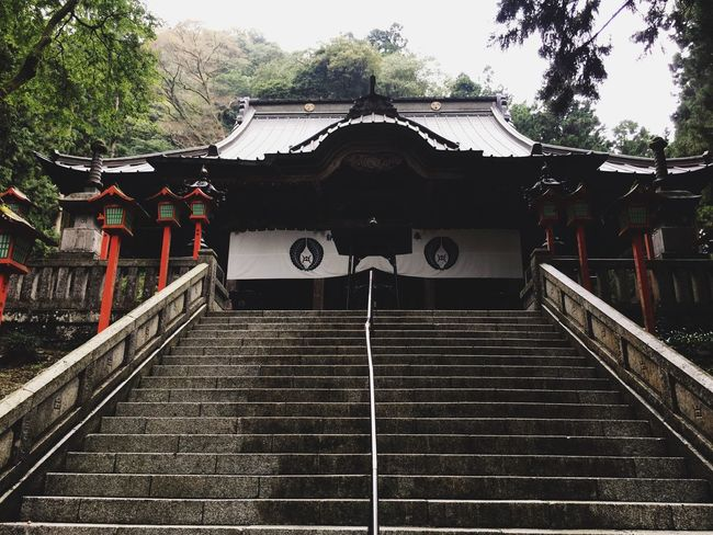 Architecture Built Structure Steps And Staircases Culture Japan Photography Beauty In Nature Japanese Culture Japanese Style Japan Vscocam VSCO Good Vibes Staircase Low Angle View Tourism Moss Temple Calm Tranquil Scene Stone
