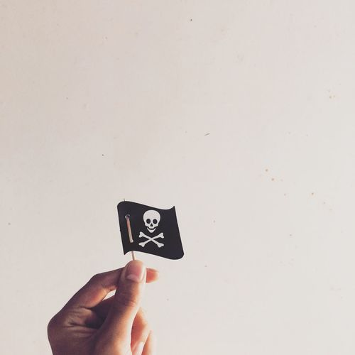 Man holding pirate flag