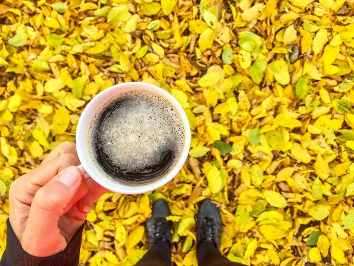 Coffee Hand Cup Autumn Fallen Leaves Fall Yellow Leaves Point Of View (null)Holding Food And Drink Freshness Person Personal Perspective Field Yellow Low Section Drink Leaf Men Refreshment Plant Day Outdoors Agriculture Vibrant Color
