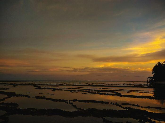 sunset Salt