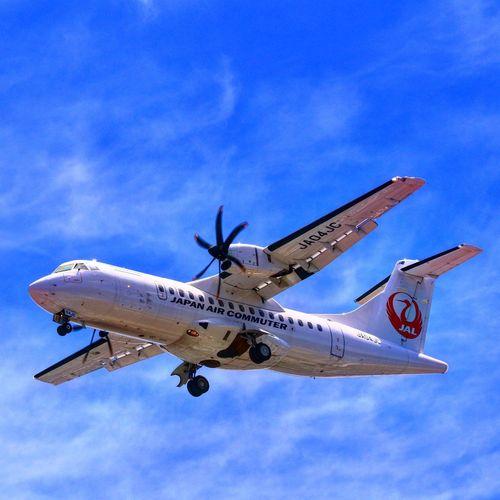 伊丹空港✈️ 千里川 Jal 飛行機 伊丹空港 千里川 Air Vehicle Airplane Sky Flying Transportation Mode Of Transportation Blue Travel