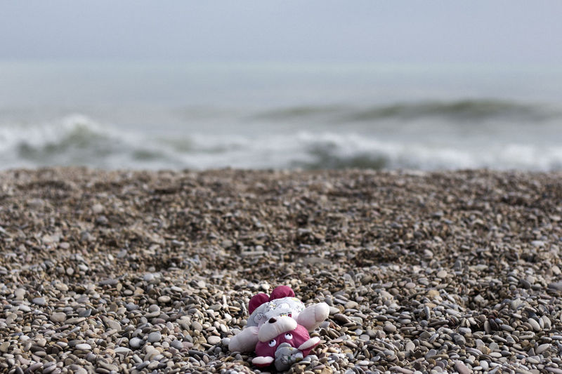 Stuffed toy on pebbles at beach