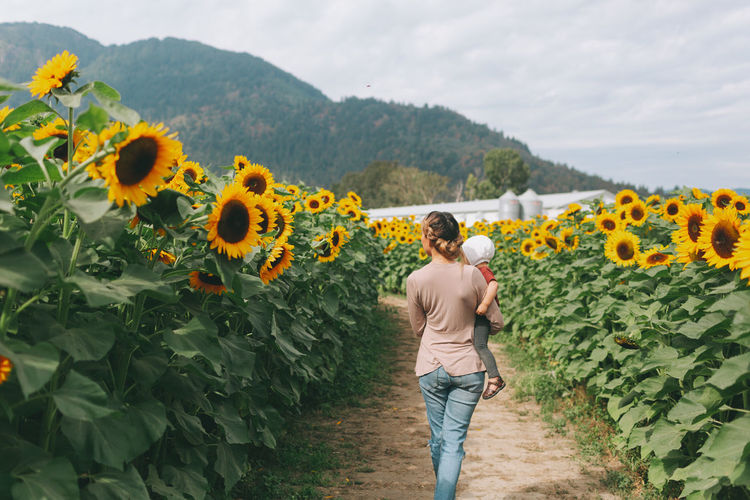 A mother and her baby daughter in a sunflower field. Baby Daughters Family Field Love Mother Sunflower Adult Beauty In Nature Daughter Day Growth Leisure Activity Lifestyles Nature One Person Outdoors Plant Real People Standing