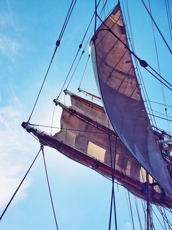 My Year My View Sails Sailing Ship Yacht Sails Up Tall Ship Low Angle View Sky No People Outdoors Mast Day