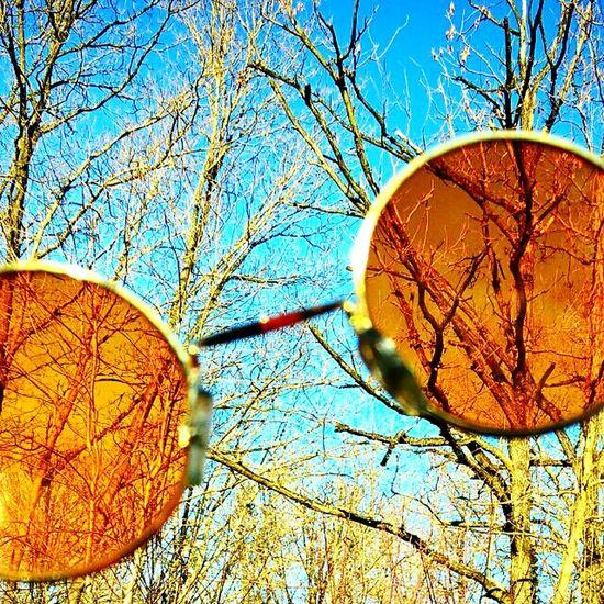 Thirdeyeemphoto ThirdEye Worldthroughmyeyes Nature On Your Doorstep Wood Forest Outdoors Life Enjoying Life Trip Still Life Nature Photography Wildlife & Nature Wild Chill Wonderland Alice In Wonderland Escape Winter Autumn Nature