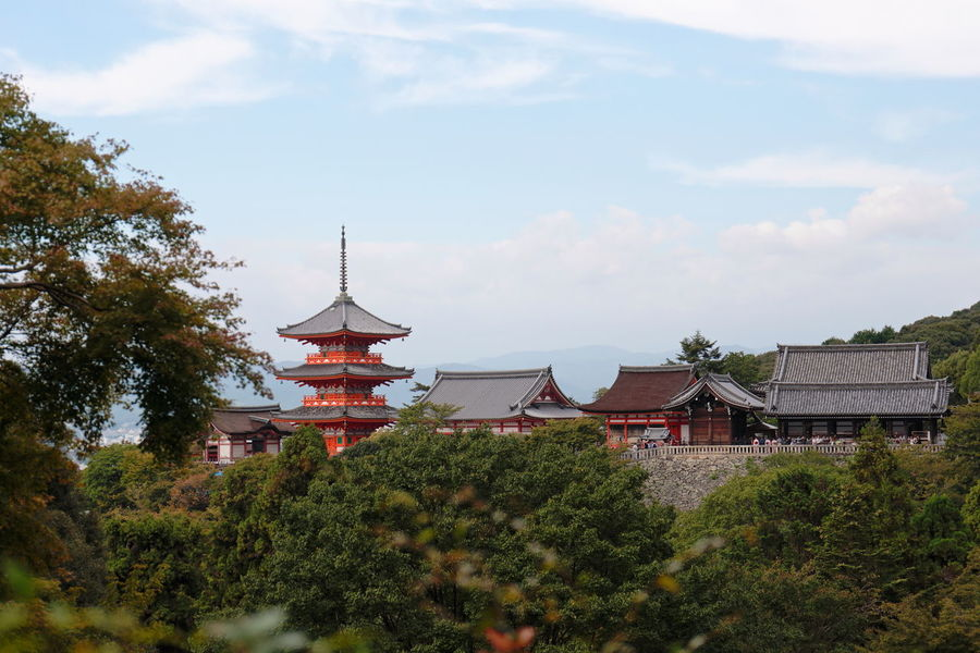 Architecture Building Exterior Built Structure City Cityscape Cloud - Sky Day Fox Japan Kyoto Nature No People Outdoors Shrine Sky Travel Travel Destinations Tree
