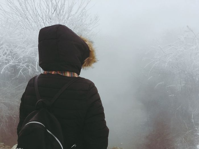 Rear View Of Person Wearing Hooded Jacket Standing Amidst Bare Trees During Foggy Weather