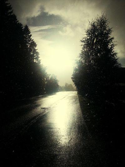 sunnyrain! love it! Sun Rain