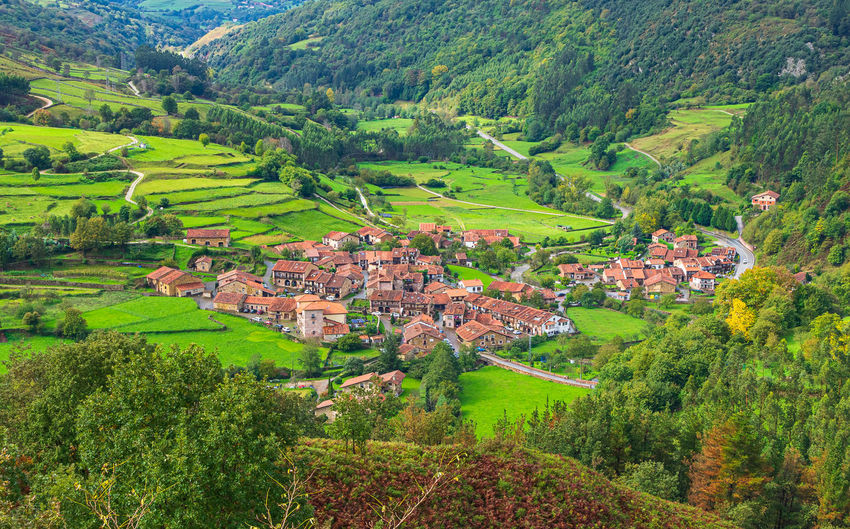 Aerial view of green landscape and houses in village