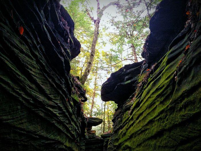 Virginia Kendall Park, Peninsula, Ohio Ohio Nature Virginia Kendall Park Peninsula Ohio Akron Akron Ohio Parks State Park  Cuyahoga Valley National Park