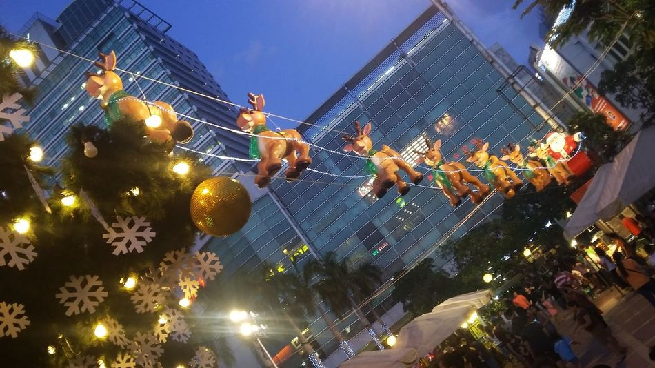 Low Angle View Tree SantaClausIsComing Celebration Christmas Tree