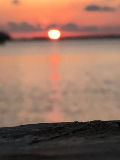 Sunset Taking Photos Enjoying Life Beautiful Day